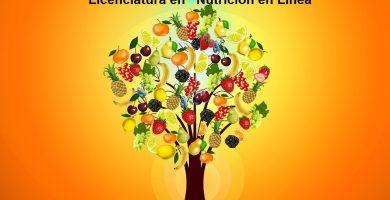 licenciaturas en nutricion en linea gratis